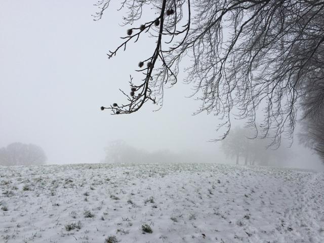 Ostwestfalen im Januar 2015