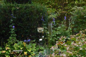... mit Blick und Ausgang in den Garten ...